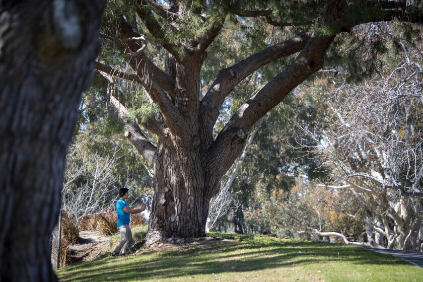 A man exercises amid warm weather at Mile Square Park in Fountain Valley on Feb. 20. The region could see record high temperatures Thursday.