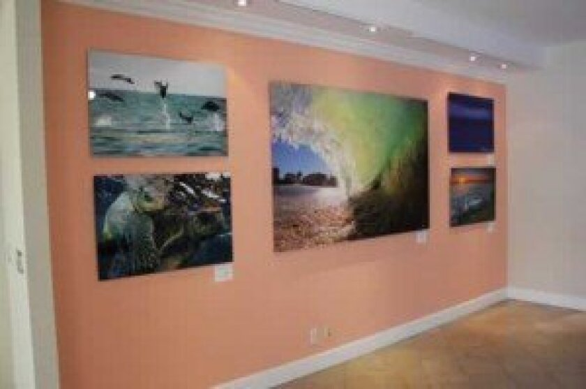 Photography by Aaron Goulding, Ryan June, Brent Haywood and Sharon Hinkley is part of a new exhibit at the La Jolla Village information Center.