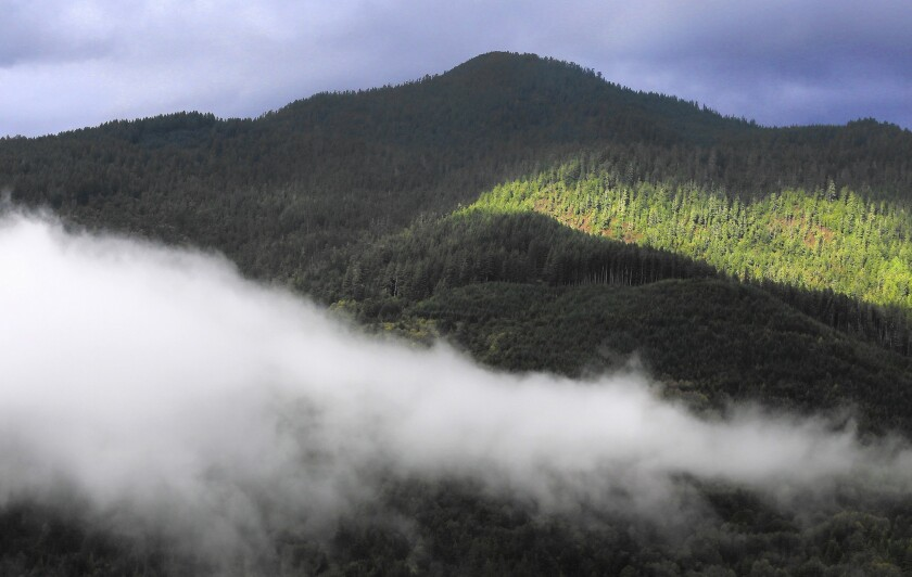 As part of the cap-and-trade program developed by the California Air Resources Board, the Yurok tribe is using its forest land to generate carbon-storage credits that can be sold to oil companies and other businesses that must reduce greenhouse gas emissions.