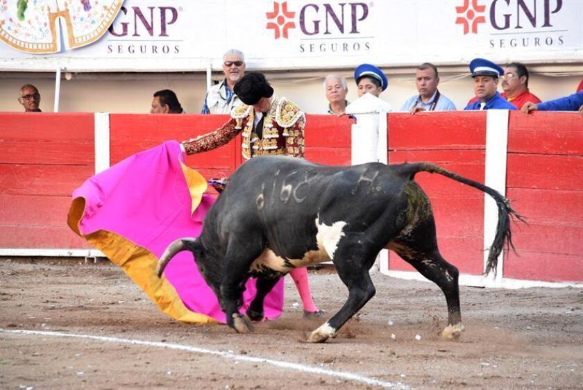 """El torero español Julián López """"El Juli"""" fue registrado este sábado al lidiar su primer toro, """"Armillita Arista"""", durante la octava corrida de la Feria Nacional de San Marcos 2018, en la plaza de toros Monumental de Aguascalientes (México). EFE"""