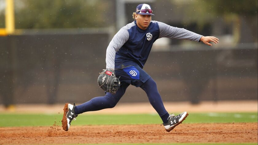 San Diego Padres infielder Josh Naylor fields grounders during spring training in Peoria on Feb. 14, 2018.