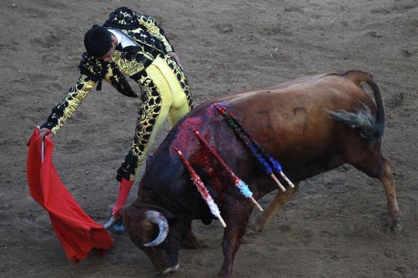 El torero mexicano Sergio Flores, lidia el toro Bambuco de la ganadería Mondoñedo, durante una corrida de toros hoy en Cali, Colombia. EFE