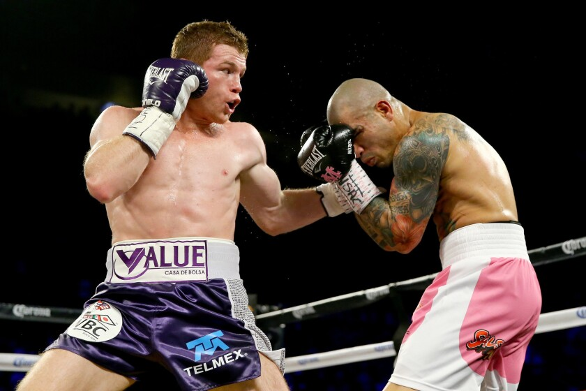 Canelo Alvarez lands a left hook against Miguel Cotto during their WBC middleweight fight on Saturday night in Las Vegas.