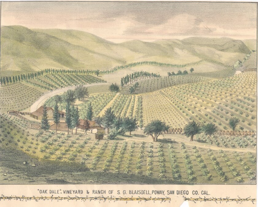 A drawing of Solon G. Blaisdell's Oak Dale Vineyard and Ranch in Poway.
