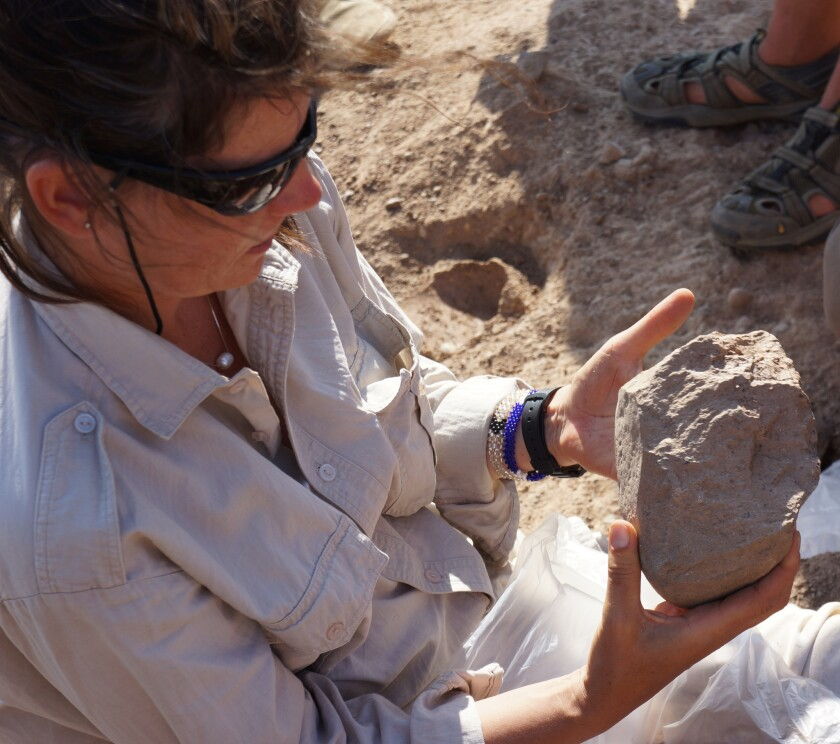 Archaeologist Sonia Harmand of Stony Brook University holds a 3.3 million-year-old stone tool discovered in Kenya.