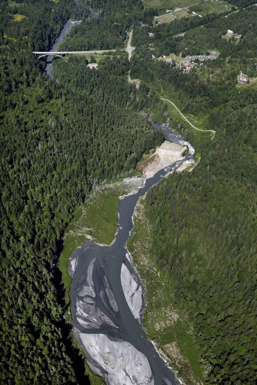 FILE - In this aerial file photo taken June 3, 2014, the Elwha River flows through what was Lake Aldwell and freely past the old Elwha Dam, at the bend at right, near Port Angeles, Wash. Scientists in the Pacific Northwest are conducting intensive studies in more than a dozen watersheds to develop