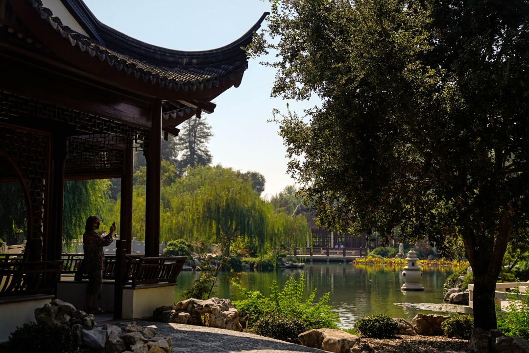 The Huntington S Chinese Garden Is Reopening On Oct 9 Los Angeles Times