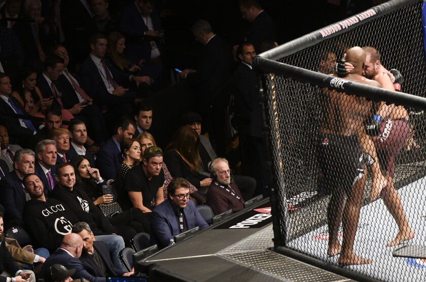President Trump, third row, third from left, watches a fight during UFC 244.