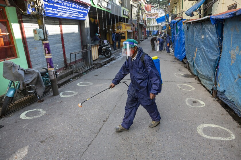 A government health worker sprays sanitiser on a street shut down to prevent the spread of the coronavirus in Dharmsala, India, Thursday, Dec. 10, 2020. (AP Photo/Ashwini Bhatia)