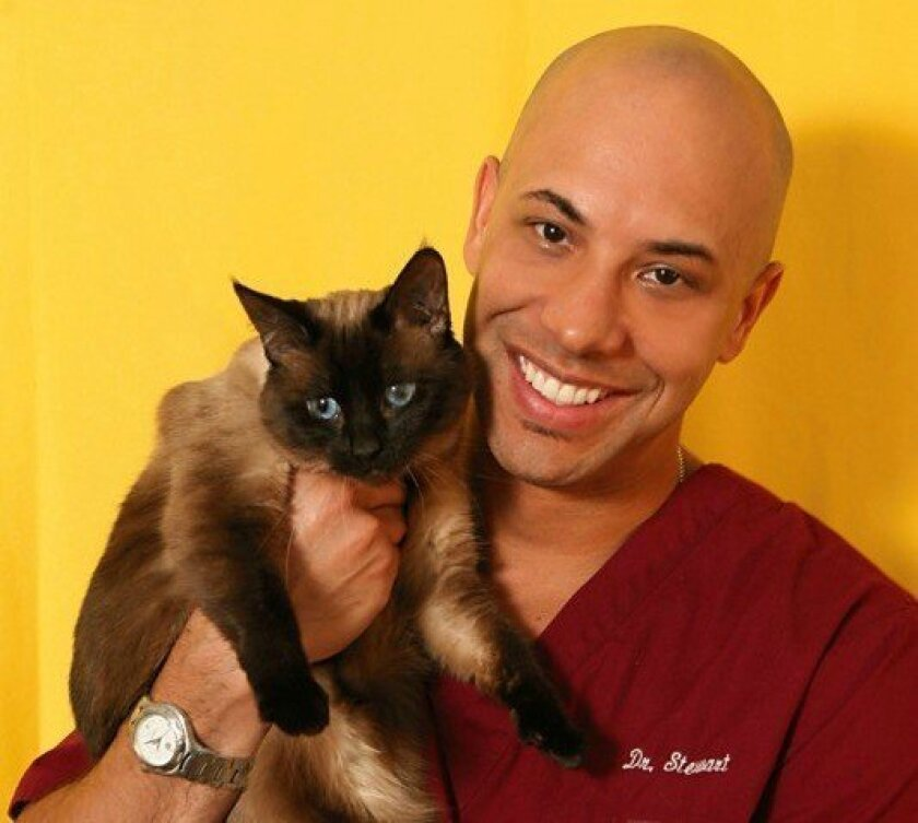 American Humane Association names first chief veterinary officer