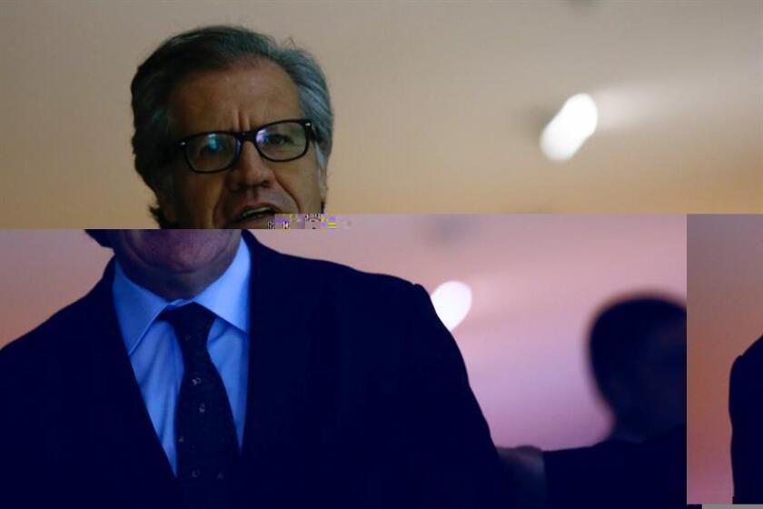 """La delegación de Bolivia en la Organización de Estados Americanos (OEA) denunciará mañana ante el Consejo Permanente el """"intervencionismo"""" del secretario general, Luis Almagro, en los """"asuntos internos"""" de los países miembros. EFE/ARCHIVO"""