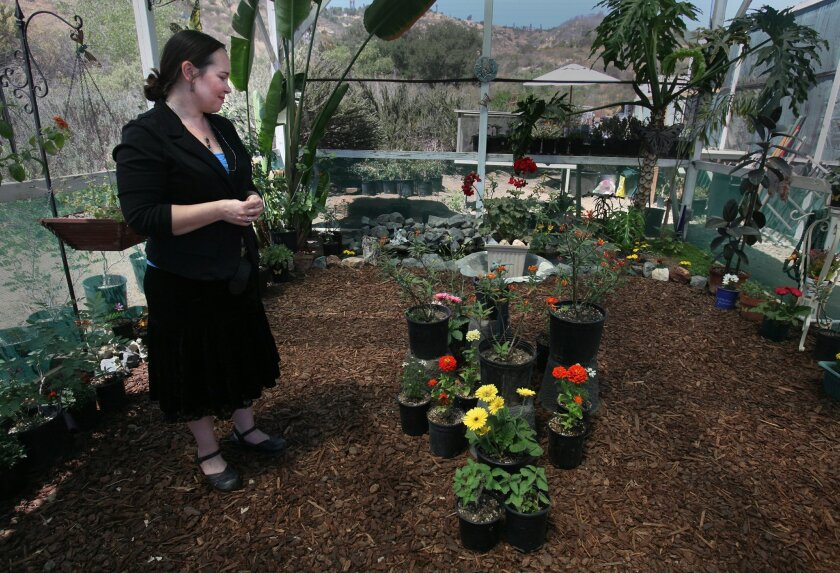 Sabrina Lukosky says she loves coming to work every morning to check the development of her butterfly garden. A roadside attraction in Bonsall off Interstate 15 is more than just honey and flowers. Sabrina Lukosky, a long time merchant of local produce, flowers and honey, has teamed up with butte