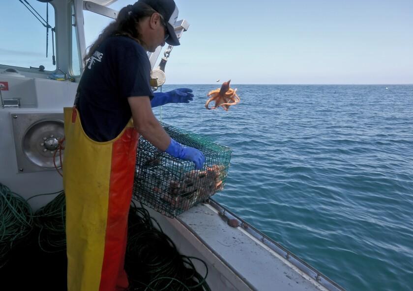 tn-wknd-et-antonello-fisherman-20190922-6