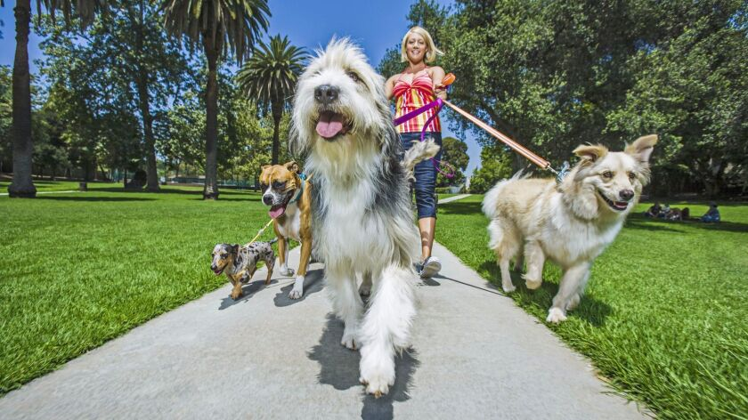 pets in the park