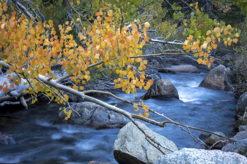 Morning at South Fork of Bishop Creek, not far from Parchers Resort, in California.