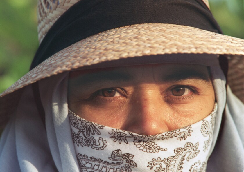 Maria Ambris, a Coachella Valley agricultural worker, wears a hat and bandanna to protect her from the sun and pesticides on June 4, 1996.