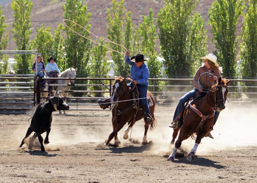 Sports-Rodeo-Jade magginis.jpg