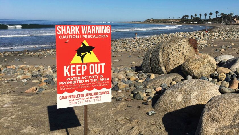 A sign warns visitors at San Onofre State Beach after a woman was attacked by a shark in the area.