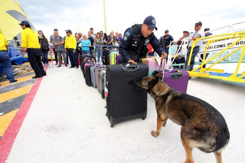 Elementos de la Policía federal realizan revisiones al equipaje de turistas en Playa del Carmen, Quintana Roo (México). EFE