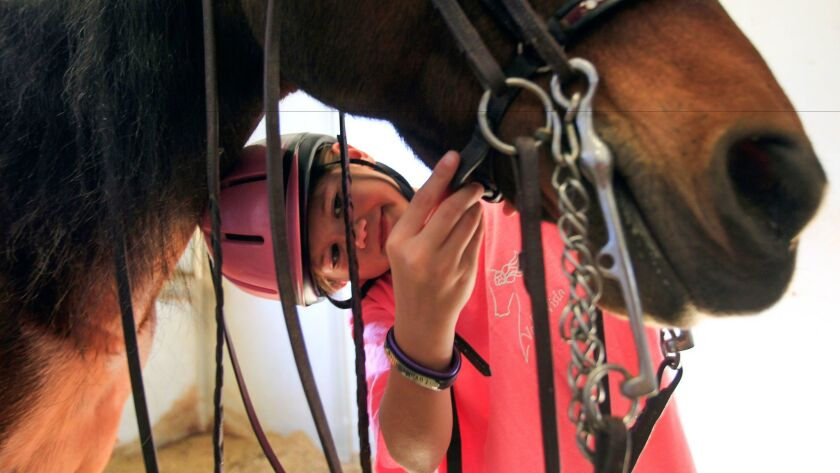 Reserve world champion Morgan equestrian Nini Hodge, 10, from Poway, prepares her horse Henry for a ride at Vista Valle Farms in Escondido.