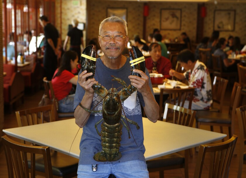 Ly Hua holds a lobster at Newport Seafood