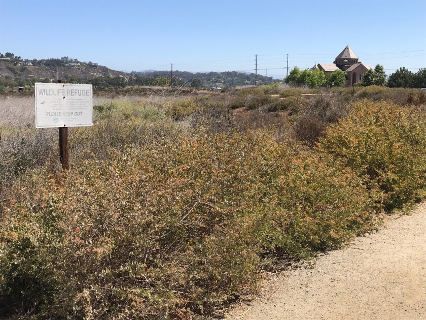The new trail as part of the restoration will connect with the Dust Devil Nature Trail on El Camino Real.
