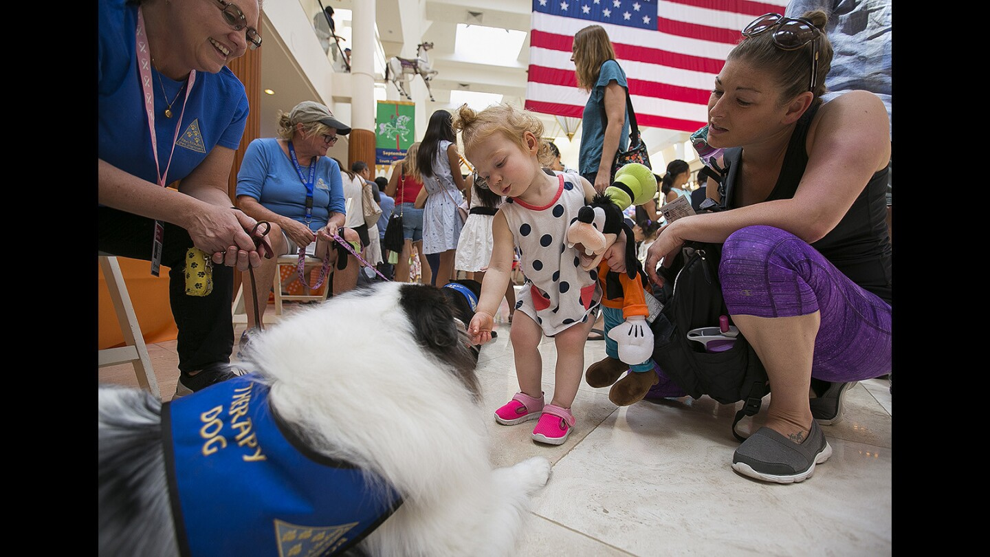 Photo Gallery: Festival of Children opening