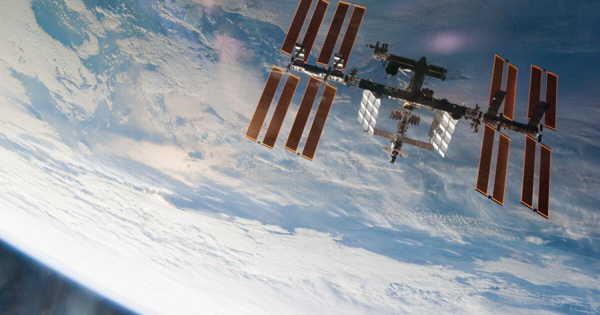 Astronauts are not the only life forms to inhabit the International Space Station