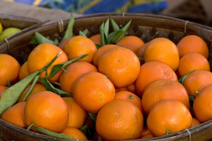 Farmers Markets: How to be choosy with clementines