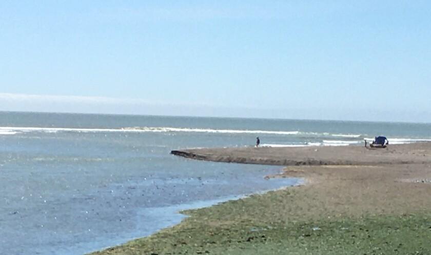 bolinas coast.jpg