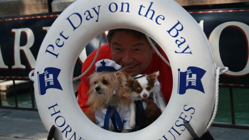 Hornblower Cruises Pet Day on the Bay. (Courtesy photo)