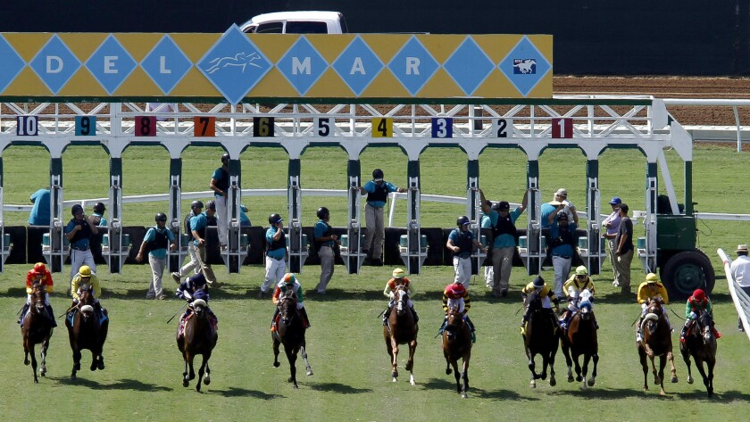 Horses take off from the starting gate at Del Mar.