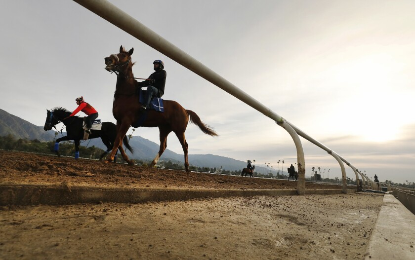 ARCADIA, CA - MARCH 11, 2019 Riders, jockeys and horses return to training on the Santa Anita Park track Monday morning March 11, 2019 as the thoroughbred racetrack in Arcadia is analyzing recent deaths of horses during training on the track. Santa Anita had canceled racing to re-examine its dirt surface after the deaths of 21 horses in the last two months. (Al Seib / Los Angeles Times)