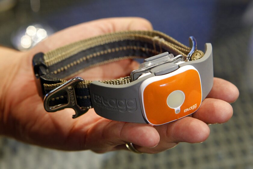 Qualcomm displays its Tagg Pet Tracker at the Consumer Electronics Show in Las Vegas earlier this year. U-T photo by  Eduardo Contreras