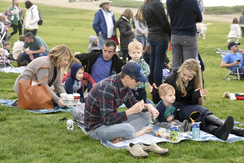 Picnicking on the lawn at Powerhouse Park