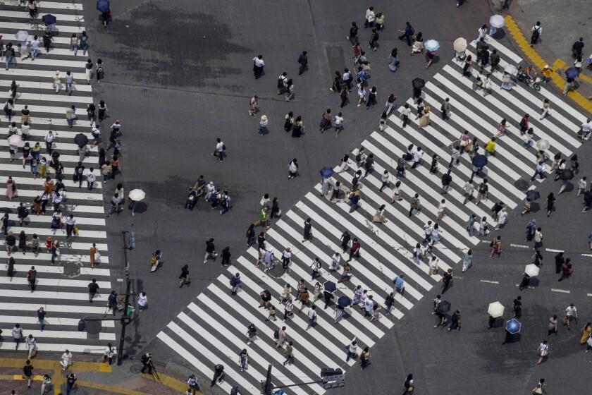 نمای بالایی از افراد در مسیرهای پیاده روی