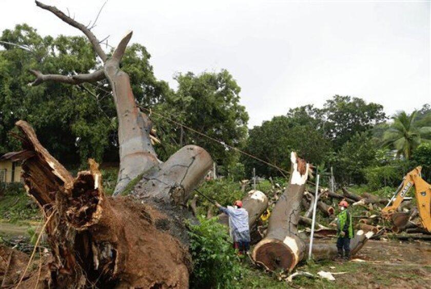 Trabajadores cortan las ramas de un árbol que cayó y mató a un niño en la Ciudad de Panamá, el martes 22 de noviembre de 2016. Tres personas han muerto en Panamá en accidentes derivados de la tormenta tropical Otto.