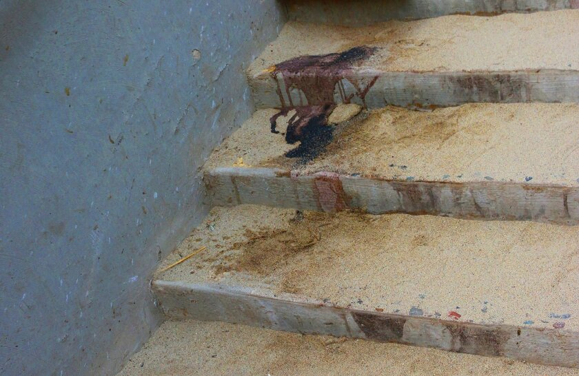 What appears to be excrement from sea lions is found on public stairs that lead from La Jolla's Ellen Browning Scripps Park to beach access at La Jolla Cove, which is populated with sea lions year round. (Photo taken April 2016)