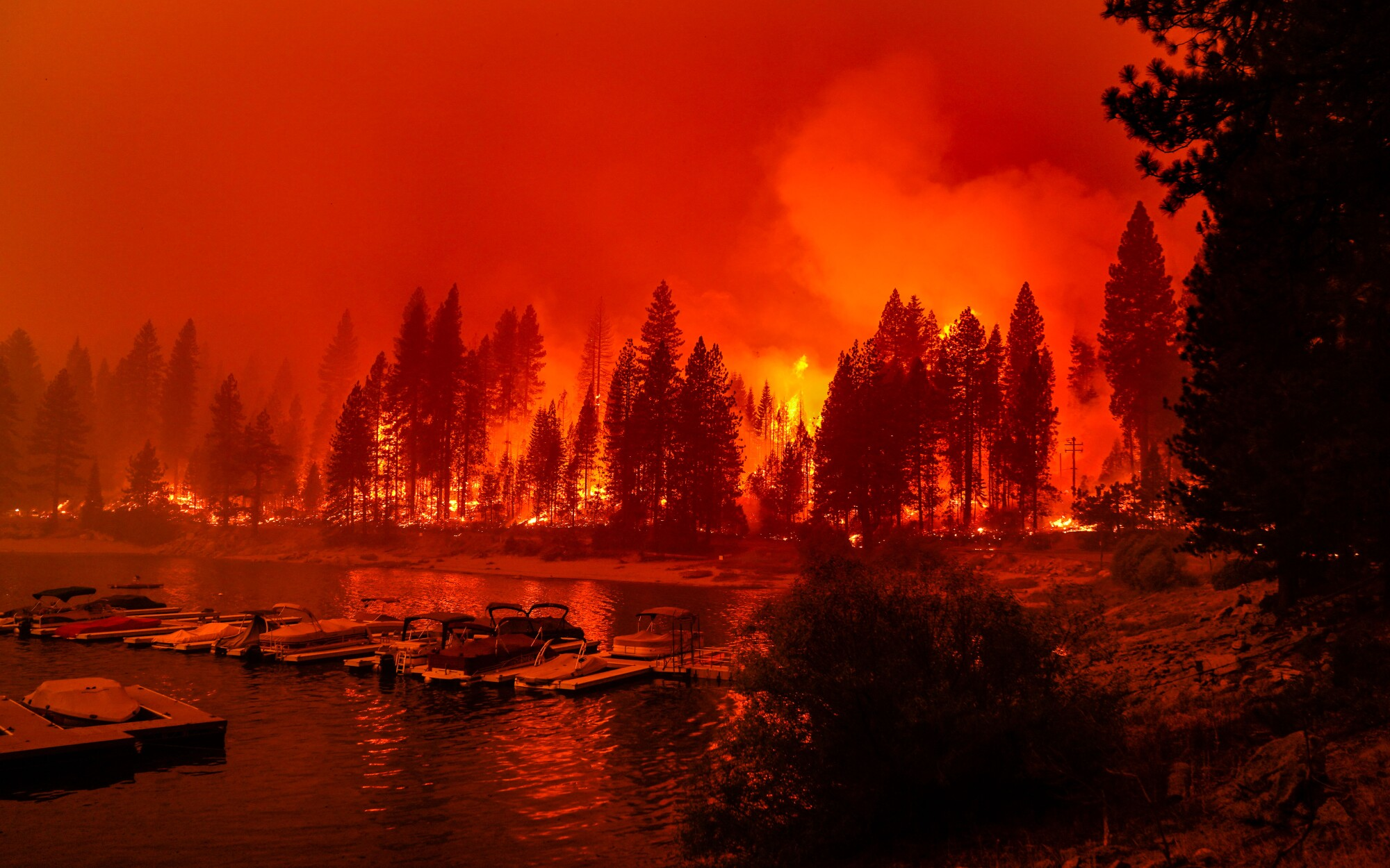 Firefighters conduct a back-burn operation near Shaver Lake Marina on Sept. 6, 2020.