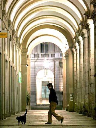A pedestrian and a stray cat are dwarfed by the covered arcades in Turin.