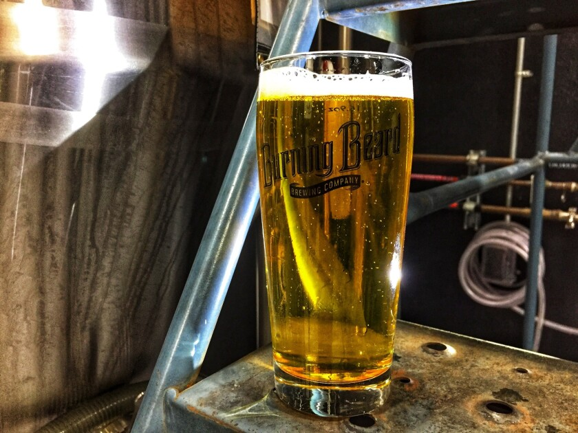 Normcore Pils is available at Burning Beard Brewing Company.