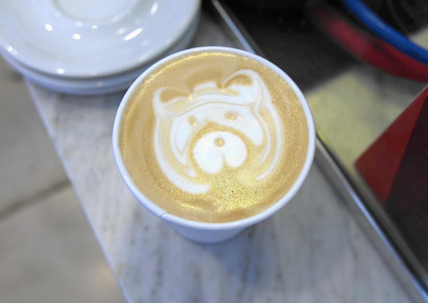 tn-tn-wknd-et-0529-bear-coast-coffee-3-jpg-20160531