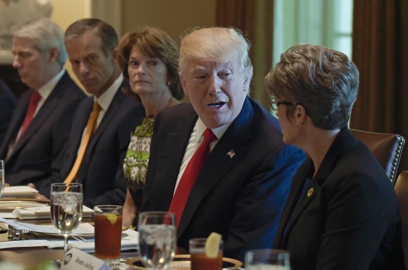 Rob Portman, John Thune, Lisa Murkowski, Donald Trump, Joni Ernst