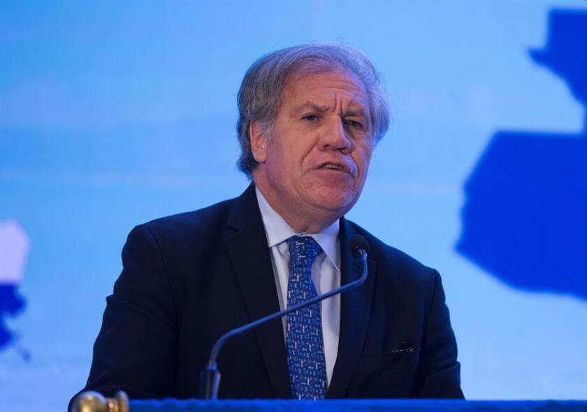 El secretario general de la Organización de Estados Americanos, Luis Almagro. EFE/Archivo