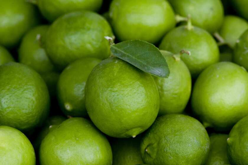 Mexican limes grown by Flying Disc Ranch in Thermal, at the Santa Monica farmers market.