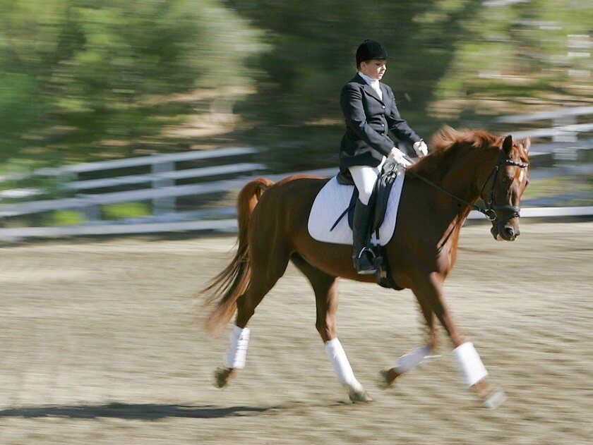 Mallory Thompson of Fallbrook practiced with Der Tanz at Dressage Warmbloods in Bonsall late last month.