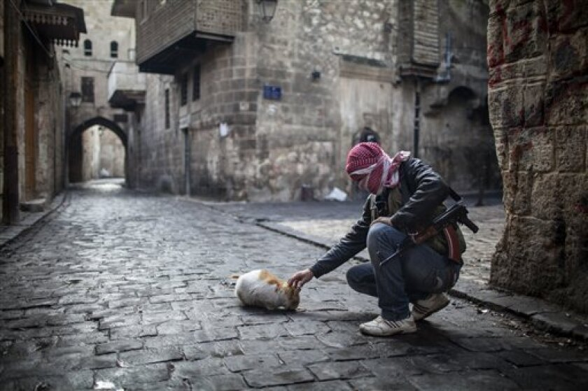A Free Syrian Army fighter feeds bread to a cat in the old city of Aleppo, Syria, Sunday, Jan. 6, 2013. The revolution against Syrian President Bashar Assad that began in March 2011, started with peaceful protests but morphed into a civil war that has killed more than 60,000 people, according to a recent United Nations recent estimate. (AP Photo/Andoni Lubaki)