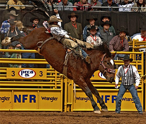 Will Lowe of the National Rodeo Finals