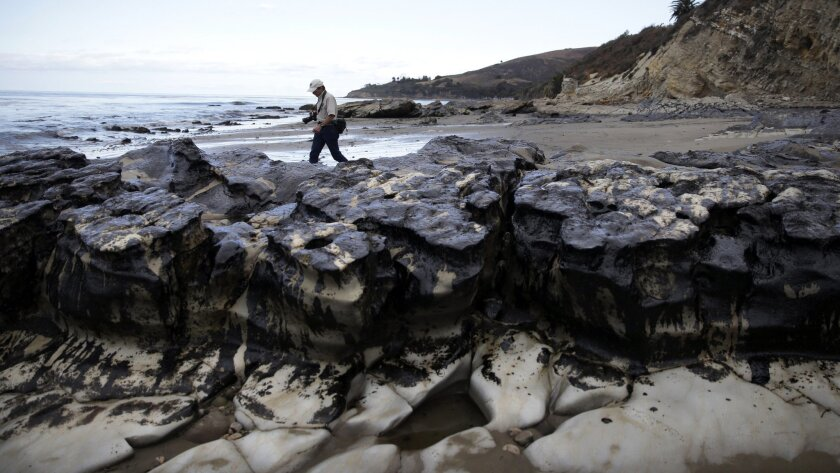 FILE - In this May 21, 2015, file photo, David Ledig, a national monument manager from the Bureau of Land Management, walks past rocks covered in oil at Refugio State Beach, north of Goleta, Calif. Plains All American Pipeline said in a statement Tuesday, May 17, 2016, that a California grand jury has indicted the company and one of its employees in connection with the pipeline break. (AP Photo/Jae Hong, File)
