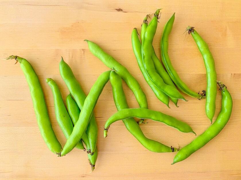 Preparing fresh fava beans is worth the effort.